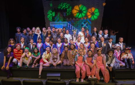 Shrek Junior wows ASD community