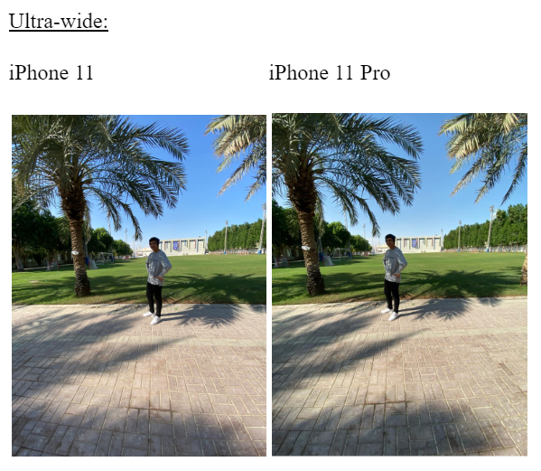 Comparison between the iPhone 11 and iPhone 11 Pro ultra -wide camerra
